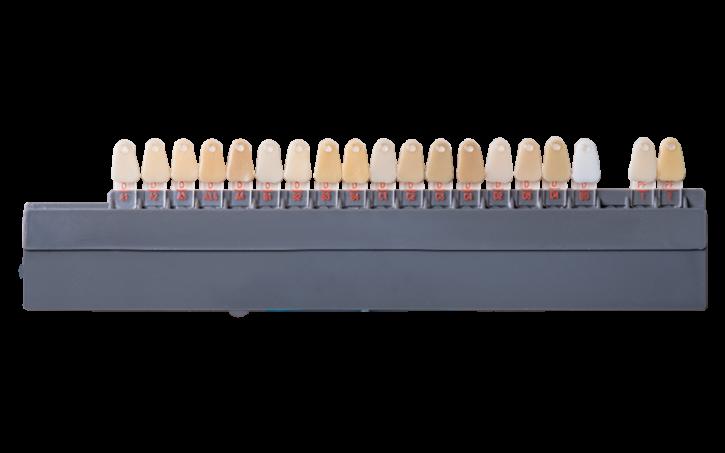 Zahnfarbringe -Dentin